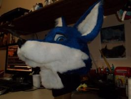 Fursuit Darking Fox 3 by FursuitBrasil