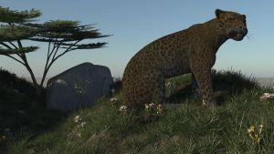 leopardC by fractal2cry