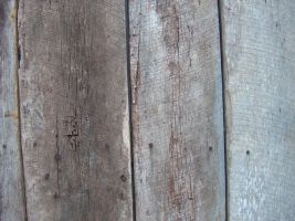 Wood Texture 3 by Freedom-Falling