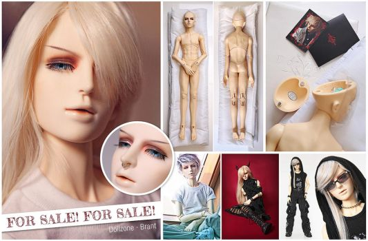 FOR SALE - Dollzone Brant by Labeculas-Dollhouse