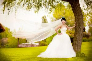 My Sister's Wedding by juztin-le