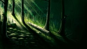 Through the woods by Nosfer