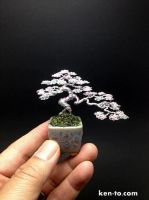 Mame Silver Rose Wire bonsai tree by Ken To by KenToArt