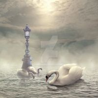 The Swan Lake HD by E-DinaPhotoArt