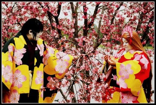 A day with Cherry Blossoms... by Mlarad