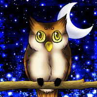 .:Owl:. by graciegra