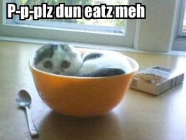 Le cereal cat by iAMoatmeal
