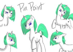 OC Request: Pin Point by Bluefeathercat