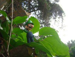 Luigi in the trees by FJOJR
