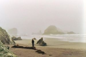Fog in Big Sur, CA Two by Procedure1
