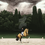 CHALLENGE OF ARES -Dressage- by BH-Stables