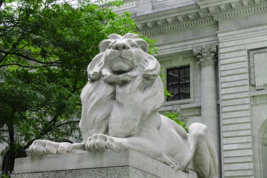 Library Lion by DoubleVision107