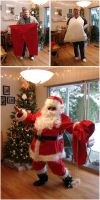 the guy in the funny red suit by rapidograph