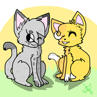 Ashfur And squirrelfight by spottedtail223