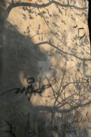 Nature writings by AlmostInsane