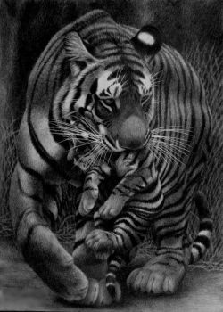 Precious Cargo, pencil by Panthera11