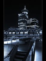 The Lookout by Val-Faustino
