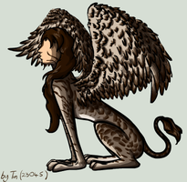 Chocolate Tabby Sphinx by TinTans