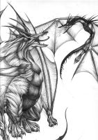 Wyverns - Frost and Fire by Chaos-Flower