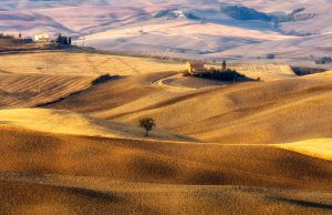 Tuscany in summer by marco52