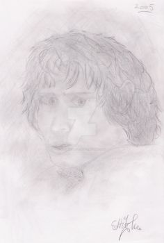 Frodo by WoundedSoul99