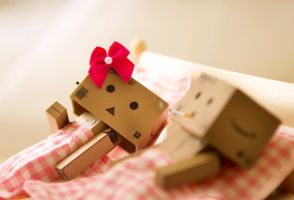 Danbo's Lost Virginity by BryPhotography