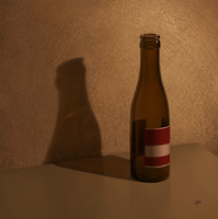 Beer Bottle Study by dierat