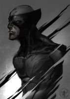 Wolverine Sketch by turpentine-08