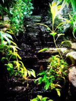 Waterfall 2 by SarahPancakes75