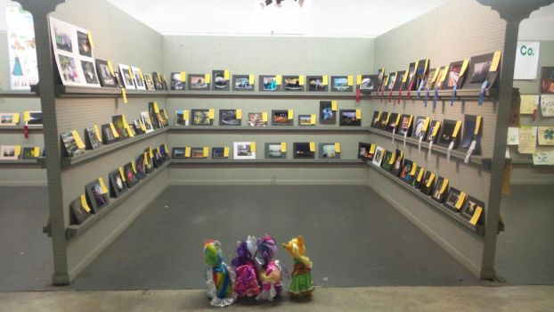 Pony Visit the Art Galley by BlackphotoStory18