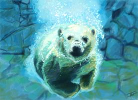 Polar bear by IsabelleWallgren