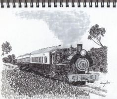 steam train by Jarryn