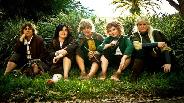 Lord of the Rings Group by cosplay-kitty