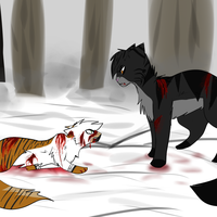 Zody vs Blacktiger picture by XFlying-With-FireX
