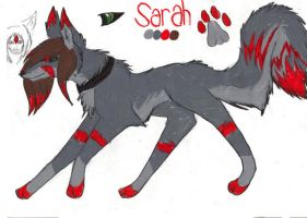 Sarah ref sheet by KaoriSkywalker