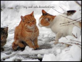 378 by evy-and-cats