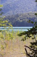 Seaside Fuschlsee by cluster5020