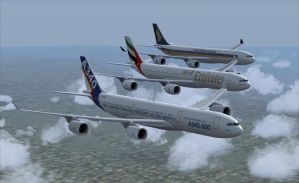 Airbus A340-500 Formation 2 by B737TheAirliner