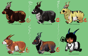 1 USD / 80 point Horned Wombat Adopts by C-ren