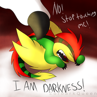 I AM DARKNESS by ZoroarkQueen
