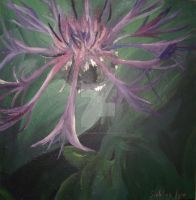 Purple flower by ArtCoursework