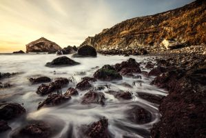 Purple Rocks and Golden Tails by fistfulofneurons