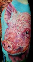 vegan piggy by tat2istcecil