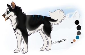 Husky- Point auction! USD or point auto by Psitt