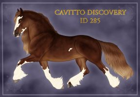 Cavitto Discovery ID 285 by VAngelLJ