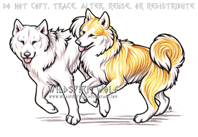 Kiyo And Momo Akitas Commish by WildSpiritWolf