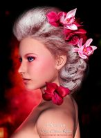 Dark Red and Pink Colorized by SK-DIGIART