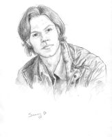 Sam Winchester by kyriadalyn