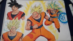 goku in every saiyan stage by andrue1988