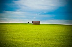 the shack 1 by thenata